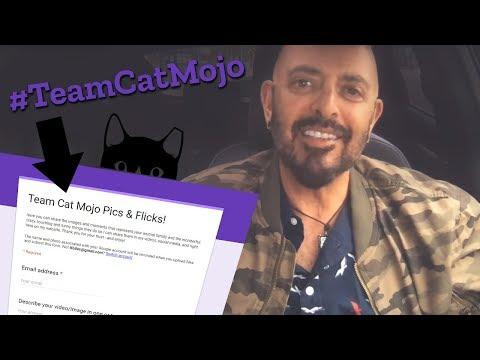 #TeamCatMojo Family Photo Album Kick-Off