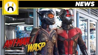 Ant-Man & The Wasp Official First Look
