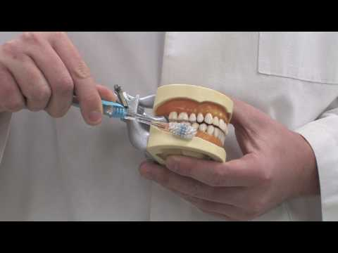 Dental Care for Teeth & Gums : How to Brush Your Teeth With Baking Soda