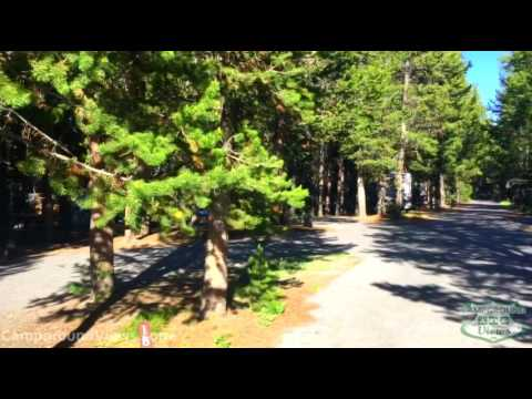 Grant Village Campground Yellowstone National Park - CampgroundViews.com