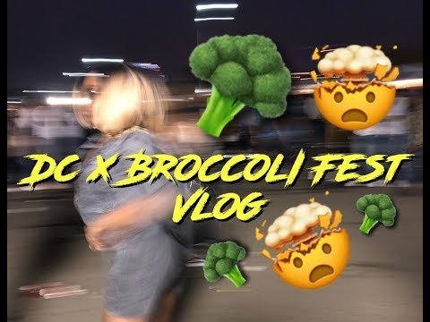 DC x Broccoli Fest Vlog | LEGALLYBOMBB