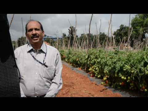 Interview by Dr.A.T.Sadashiva