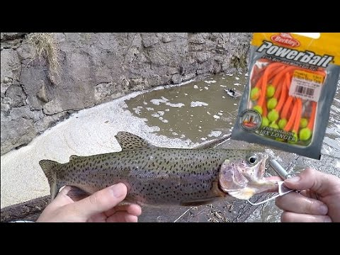 Stocked Trout Fishing w/ Powerbait MOUSE TAILS! Trout cheat code!!