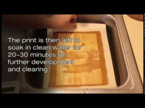 What is a Gum Bichromate Print?