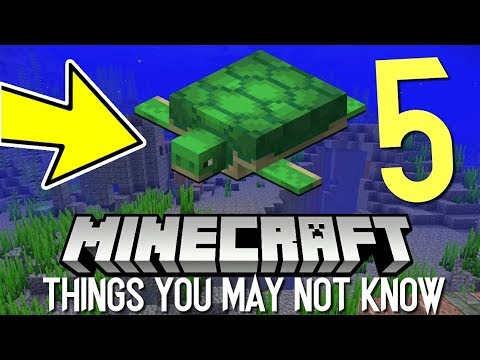 5 THINGS YOU MAY NOT KNOW ABOUT THE MINECRAFT AQUATIC UPDATE!