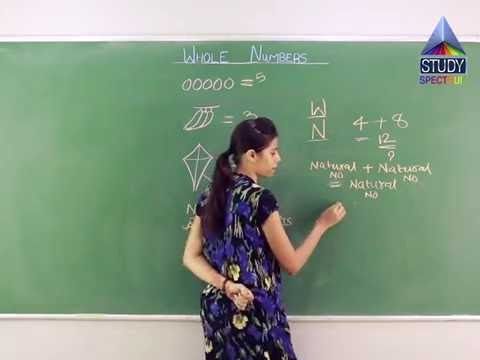 CBSE 6 Maths Whole Numbers Ep 01