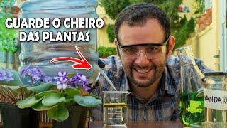 Como guardar o cheiro das plantas