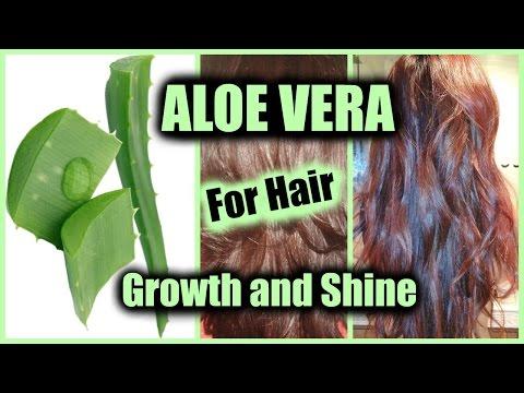 HOW TO APPLY ALOE VERA FOR HAIR GROWTH, NATURAL SHINE, STOP HAIR LOSS │ USE ALOE VERA AS HAIR SERUM