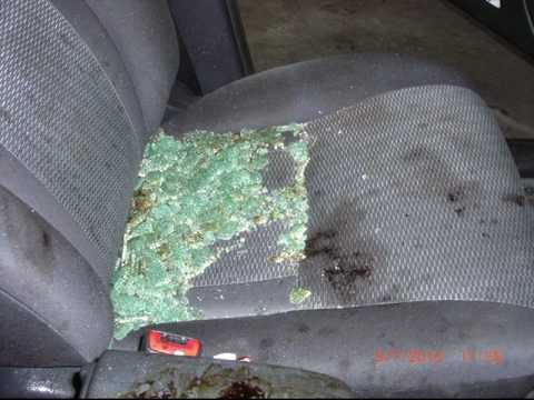 Blood, Broken Glass, and Odors in your car CAN BE FIXED