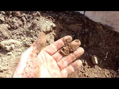 How I prep existing soil for a garden bed