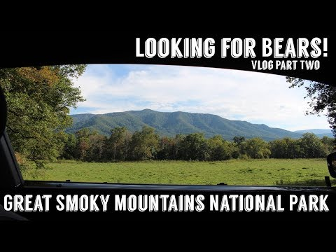 Great Smoky Mountains National Park Part Two | Wandering Around In Wonder