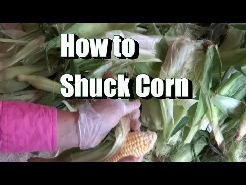 How To Shuck Corn In Two Easy Steps