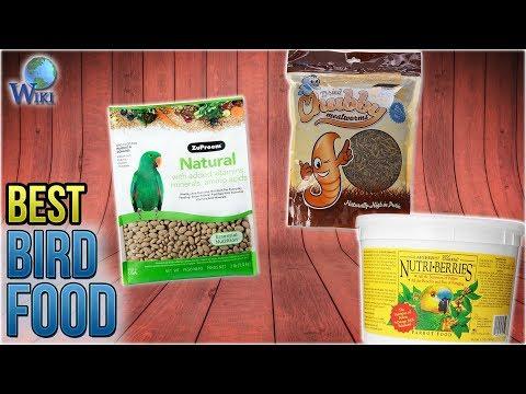 10 Best Bird Food 2018