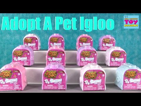 Animal Jam Igloo Adopt A Pet Series 2 Blind Bag Opening | PSToyReviews