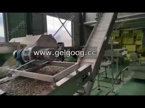sunflower seeds seasoning and roasting production line