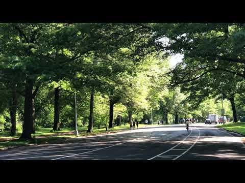 Summer in Prospect Park, Brooklyn, New York (6-2-18)