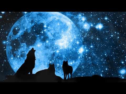 "Grandmother Wolf Spirit  ""Calling the Moon"" Conjuring/Manifestation Meditation"