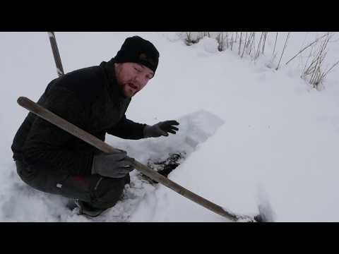 Harvesting Veggies Under 1 Foot Of Snow, After 5 Weeks Sub Zero