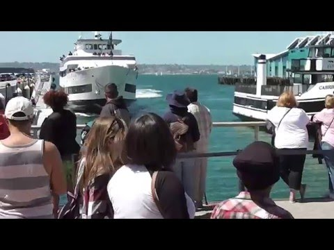 Whale Watching Boat Crashing Into San Diego Dock