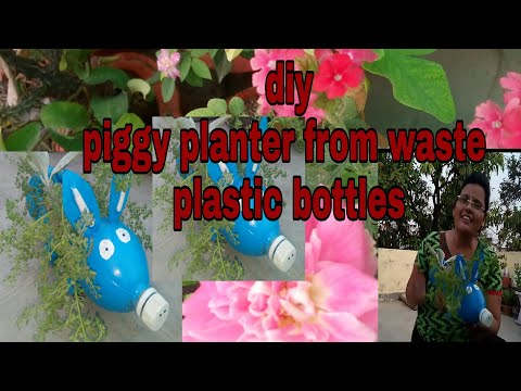 Make piggy planter easily from plastic bottles/ DIY/Vijaya's creative garden( Hindi Urdu)