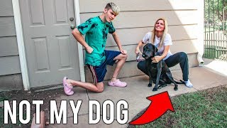 SHE SWITCHED MY DOG! (WILL I NOTICE?)