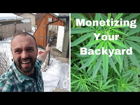 Monetizing Your Backyard, Live on Youtube Today, Ask me Anything About Passive Solar Greenhouses