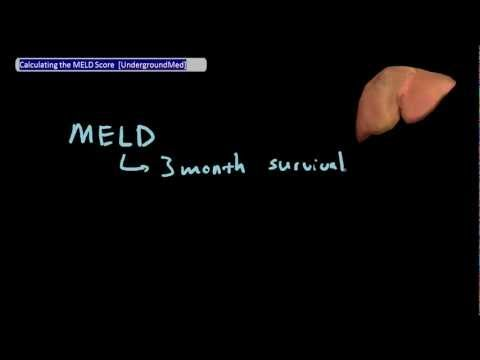 Calculating the MELD Score [UndergroundMed]