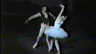 Who is this 22 years old Swan? Sylvie Guillem