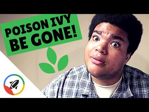 How To Get Rid Of Poison Ivy | 4 BOSS Ways!