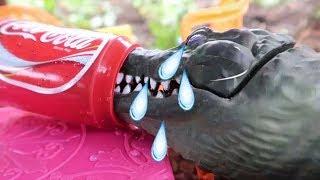 Download T Rex Dinosaur Suprise! Crocodile how eat animal toy - أطفال يذهبون إلى المدرسة تعلم الألوان للأطفا Video