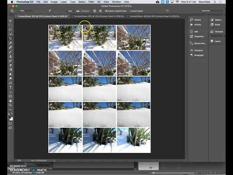 How to create a contact sheet in Adobe Bridge/Photoshop