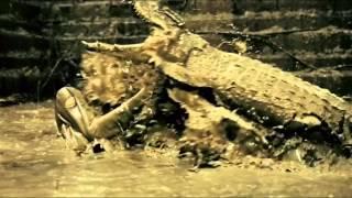 Ong Bak 2: Animal Planet