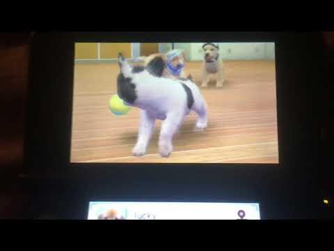 Nintendogs + Cats Part 1