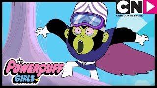 Суперкрошки | Гигантская луковица Моджо Джоджо | Cartoon Network