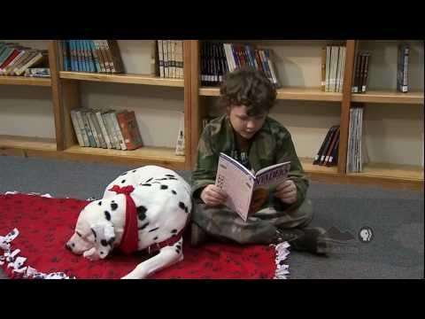 Spotlight - Therapy Dog for Reading