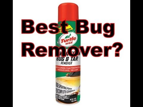 Best Bug Remover On A Car? | You Be The Judge. Very Easy To Do.