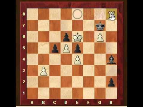 Chess lesson: practical endgames (1)