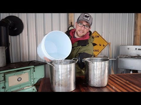 You wont Believe How Much Maple Syrup We made Today