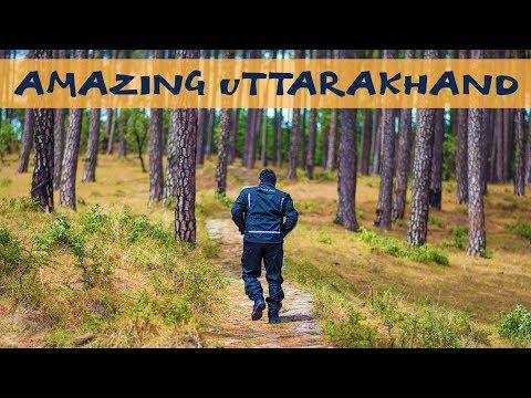 AMAZING UTTRAKHAND | Jhimar | Maidavan | Corbett | Marchula |