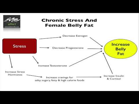 Female Belly Fat: Stress, Menopause & Other Causes