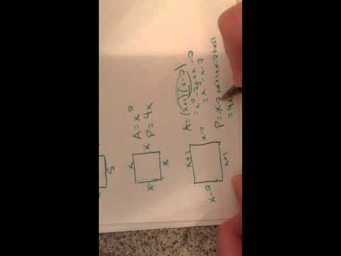 Calculate the Area and Perimeter of Rectangles with Variable Sides