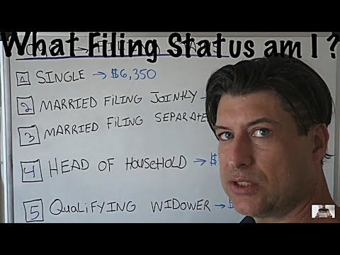 What filing Status am I on my Tax Return ?  / Income Tax Tips #8 / Single - Head of Household / CPA