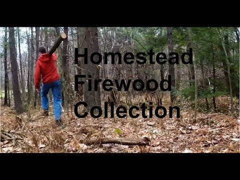 Homestead Firewood by Hand