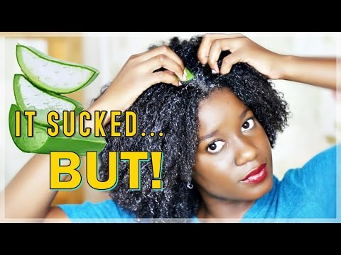 BEST Pre-Poo Treatment?? |  Aloe Vera Tested on Natural Hair
