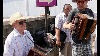 Елецкая Рояльная гармонь - традиционные народные наигрыши