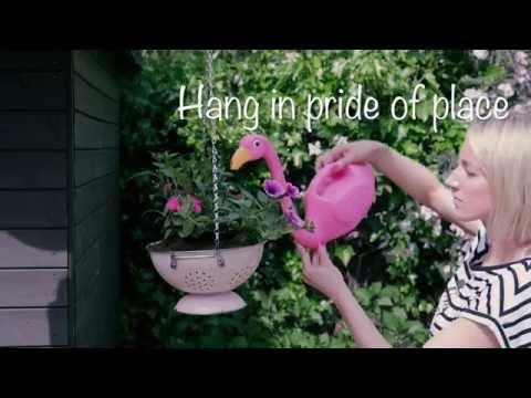Garden Hacks: How to make a hanging basket