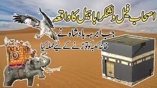 Story Of Ababbel Birds (Ababeel Save Kaba )urdu stories ! islamic stories