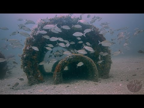 Artificial Reef Material 5 Years In the Ocean