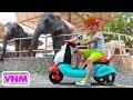 Download Nikita bé nhỏ cưỡi và chơi ở sở thú Video cho trẻ em MP3,3GP,MP4