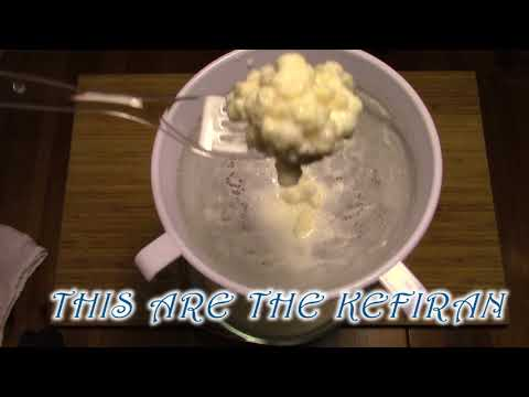 how to make milk kefir, explained in less than 3 minutes